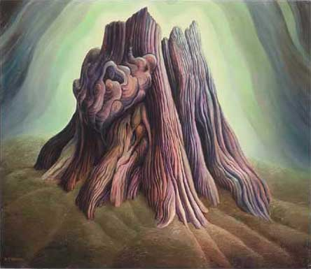 "Cedar Stump Oil on Canvas 39"" x 33.75"" Private Collection, Vancouver Island, Canada"