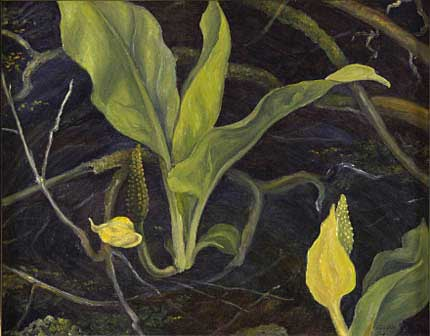 "Skunk Cabbage Oil on Panel 12"" x 16"", 1942"